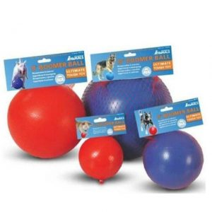 Boomer Ball Persuit Toy