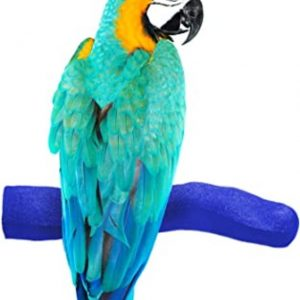 Bird Trimming Perch