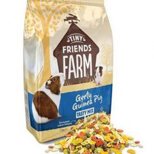 Gerty Guinea Pig