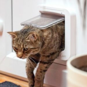Cat Mate 4 Way Locking Cat Flap White