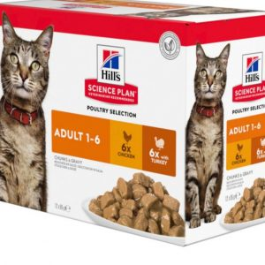 Hills Cat Adult Optimal Care Pouch 12X85G