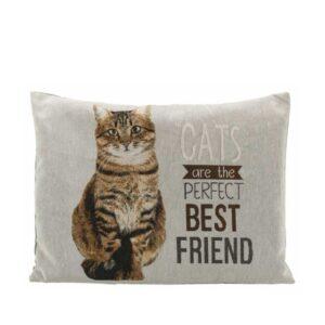 Chipo Cat Cushion