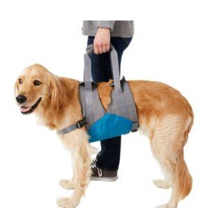 Kurgo Up & About Dog Lifter