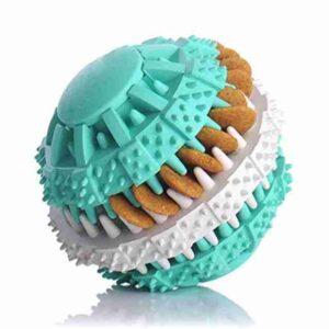 Denta Fun Ball Mint Flavour 6Cm