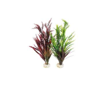 Splendid Grass 46cm