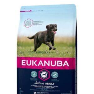 Eukunuba Large Breed Adult 2kg