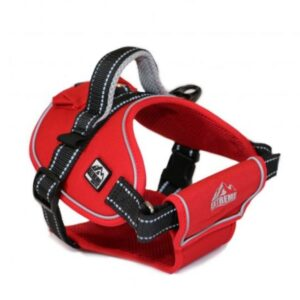 Ancol Red Extreme Harness