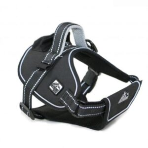 Ancol Black Extreme Harness